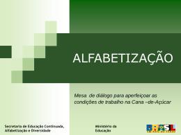 PNAD2008_Alfabetizacao_Doc interministerial1