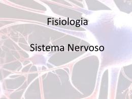 sistema nervoso_2 - Universidade Federal Fluminense