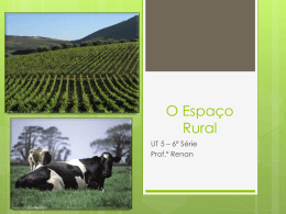 O Espaço Rural