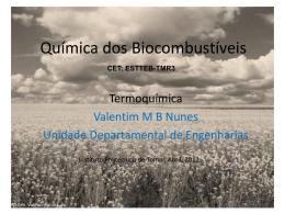 Termoquímica - Instituto Politécnico de Tomar