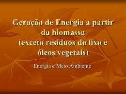 Geração de Energia a partir da biomassa (exceto resíduos do lixo e