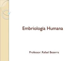 Desenvolvimento Embrionário Global 1° bim