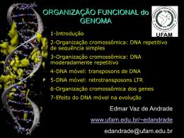 Organização do Genoma II