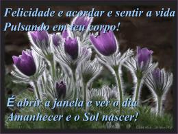 composicao_da_felicidades