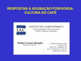 RESPOSTAS À ADUBAÇÃO FOSFATADA: CULTURA DO CAFÉ