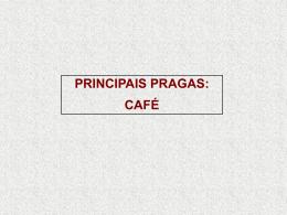 Cultura_do_Cafe 3