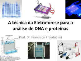 Eletroforese_PCR_Sequenciamento