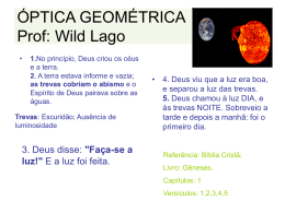 ÓPTICA GEOMÉTRICA Prof: Wild Lago