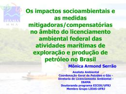 Os impactos socioambientais e as medidas mitigadoras