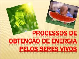 Processos de obtenção de energia pelos seres vivos