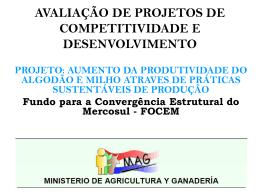 Projeto: aumento da produtividade do algodão e milho atraves de