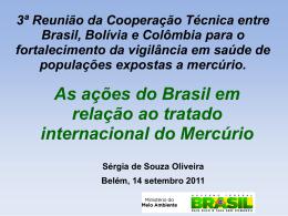 Apresentao Srgia Oliveira - BELM