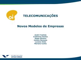 Telecom Final - Apresentação - NMECEAG2010