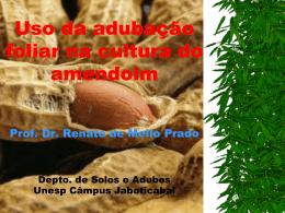 Uso da adubação foliar na cultura do amendoim