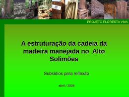 A estruturação da cadeia da madeira manejada no Alto Solimões