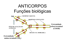 ANTICORPOS