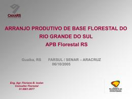 ARRANJO PRODUTIVO DE BASE FLORESTAL DO RIO GRANDE