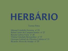 herbario oficial