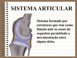 Articulacoes