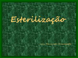 Esterilização - Visual Carioca