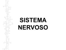 Sistema Nervoso e Sensorial