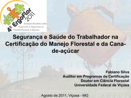 Fabiano Luis - Simposio Brasileiro sobre Ergonomia e Seguranca