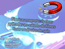 Técnicas magneto-ópticas aplicadas ao estudo de filmes finos e