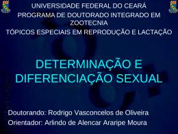 determinação e diferenciação sexual
