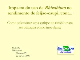 Minicurso Impacto do uso do Rhizobium