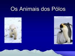 Os Animais dos Pólos