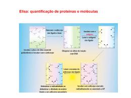 Metodologias em Biologia Molecular 4
