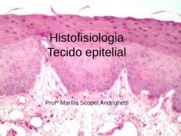 Tecido epitelial - Docente