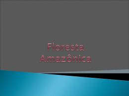 Floresta Amazônica - Colégio Rio Branco