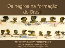 formação sócio-cultural brasileira
