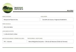 bosque_relatorio