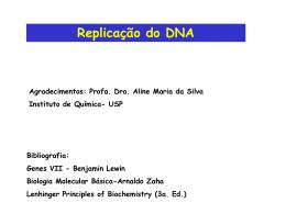 19/08 Replicação do DNA