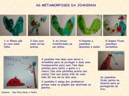 as joaninhas - Turma da Piedade