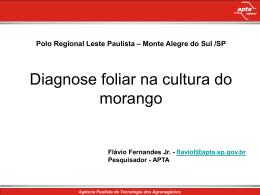 Flávio Fernandes - Nutricao de Plantas