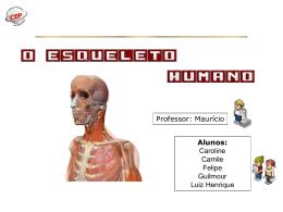 esqueleto axial - WEBDrive
