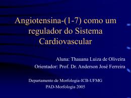 Sistema renina-angiotensina: aspectos das ações sistêmicas da