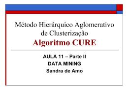 Slides-CURE - Sandra de Amo