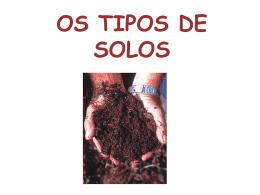 OS TIPOS DE SOLOS
