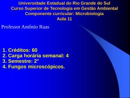 4. Fungos terrestres. - Professor Antônio Ruas