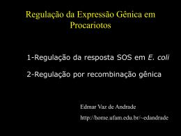 Regulação por Recombinação e Resposta SOS