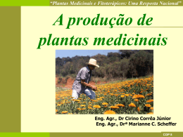 Plantas Medicinais e Fitoterápicos: Uma Resposta Nacional