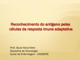 Reconhecimento do antígeno pelas células da resposta