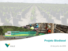 Projeto Biodiesel