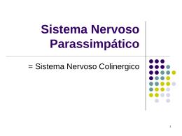 Sistema Nervoso Parasimpático