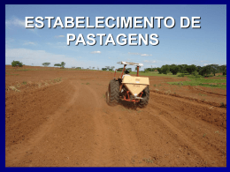 Estabelecimento de Pastagens (Power Point)