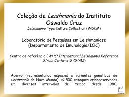 3 - EduardoIOCFioCruz_slides curso Eduardo e Lilia